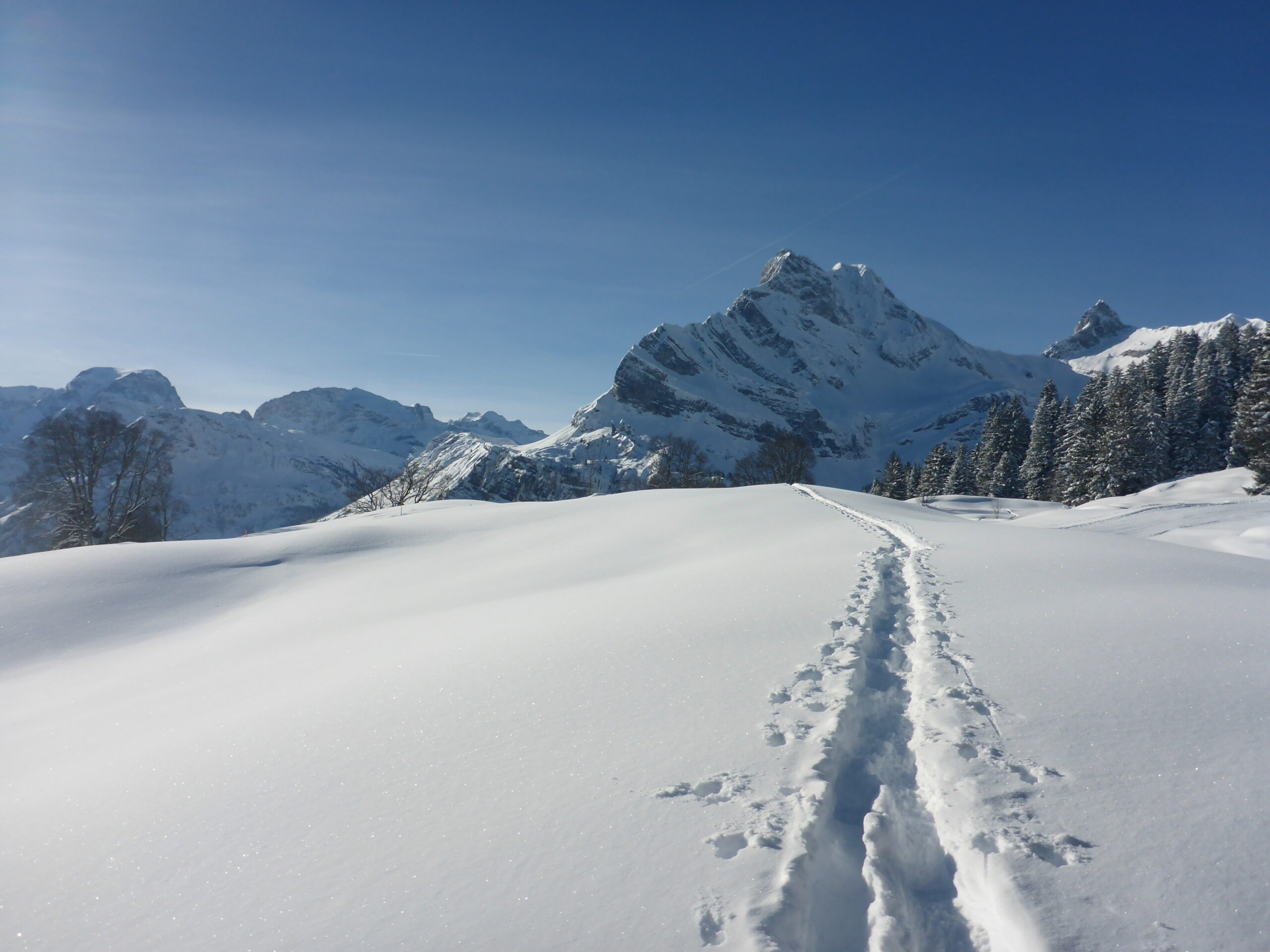 Ortstock im Winter